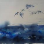 Måger9